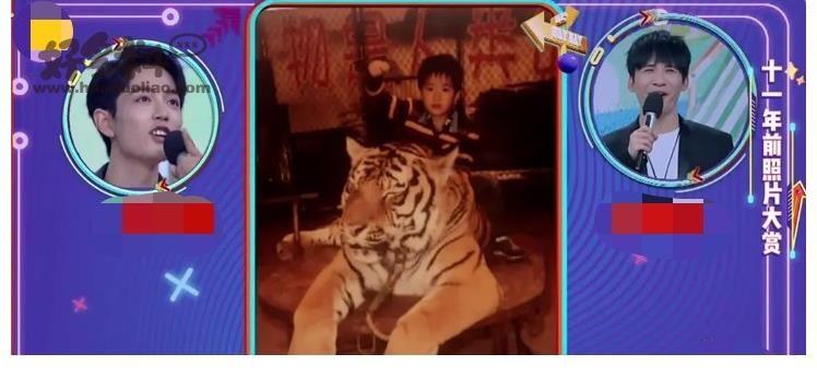 肖恩·小啊为什么是老虎?肖恩和艾博现在的关系怎么样